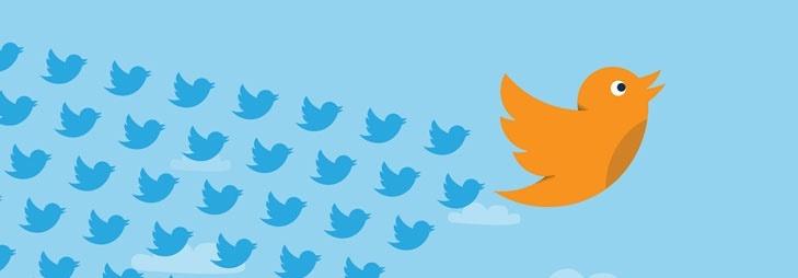 Twitter_Birds_Banner.jpg