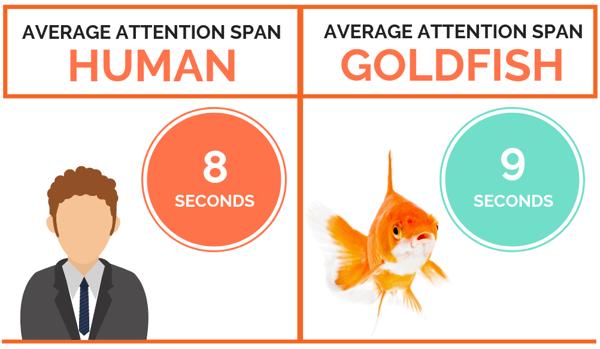 humanvsgoldfishspan